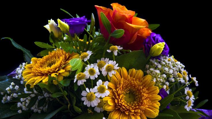 bouquet-2498385_1920.jpg